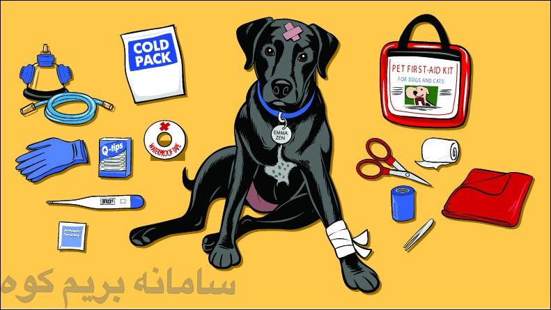 در صعود و طبعیت گردی، دامپزشک در دسترس شما نمی باشد، پس به همراه داشتن یک کیف کمک های اولیه مخصوص سگ، از اصلی ترین نیاز های شما می باشد .