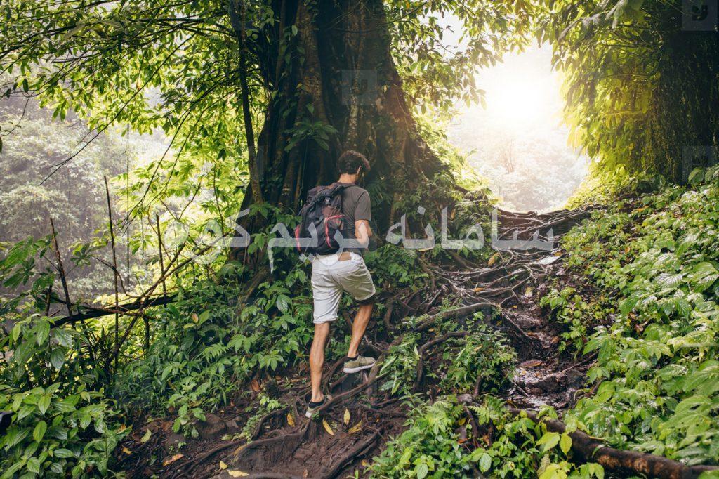 نکات مهم راجع به پوشش شما در جنگل