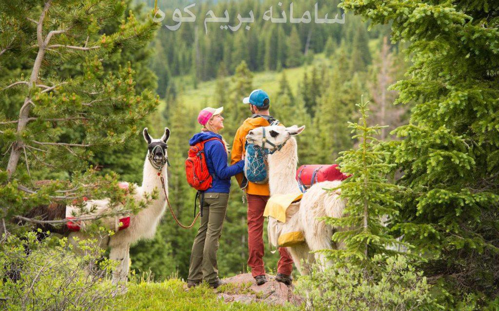 بهار فصلی برای آغاز کوهنوردی دوباره و جفت گیری حیوانات می باشد.