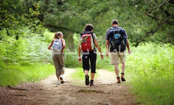 کوهنوردی در فصل بهار: 8 خطری که باید آن ها را بشناسید !