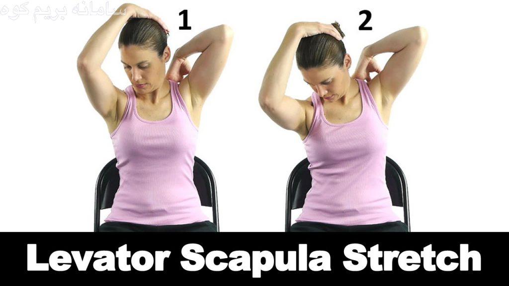 تمرین کشش عضلات بالابر