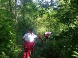 امداد جنگل
