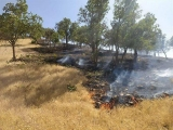 آتش سوزی دنا