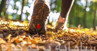 پیاده-روی-در-پاییز