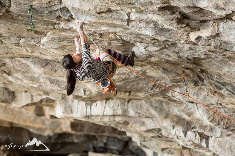 کوهنوردان برتر-شیریاشی